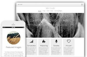 Minus WordPress Business Website Theme